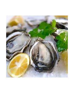 Oysters Dozen